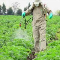 مضخات رش المبيدات الزراعية