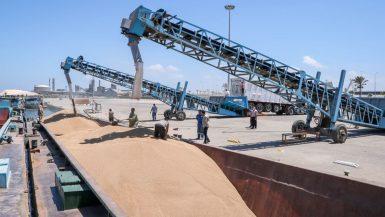 القمح ؛ النقل النهرى