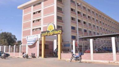 جامعة الوادى الجديد