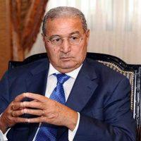 عبد الحميد أبو موسى ؛ مجلس الأعمال المصرى السعودى