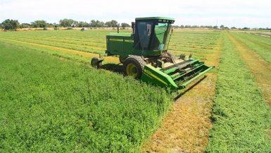 استصلاح أراضى زراعية