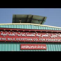 النيل المصرية للصناعات الغذائية