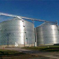 اتفاق تسهيلات بين «المصرية للصوامع» و«بنك مصر» لموردى القمح المحلى