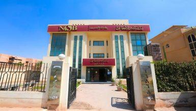 """""""بنك ناصر الاجتماعى"""" يدعم الأطفال الأيتام بأكثر من 200 ألف حساب استثمارى"""