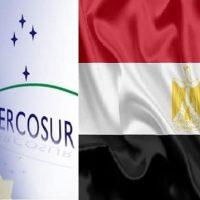 غدًا.. بدء تطبيق تخفيضات جمركية جديدة من الصادرات المصرية لدول الميركسور