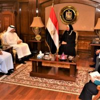 """وزيرة الصناعة تبحث مع """"مجلس الإمارات للشركات"""" فرص التعاون الصناعى والاستثمارى"""